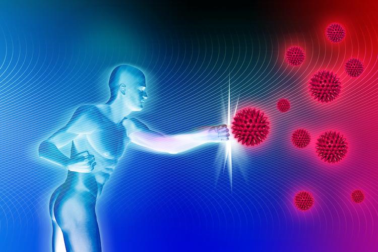 Immunsystem und Abwehrkräfte stärken